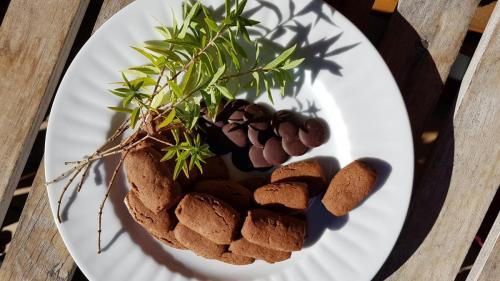 Lingots verveine chocolat